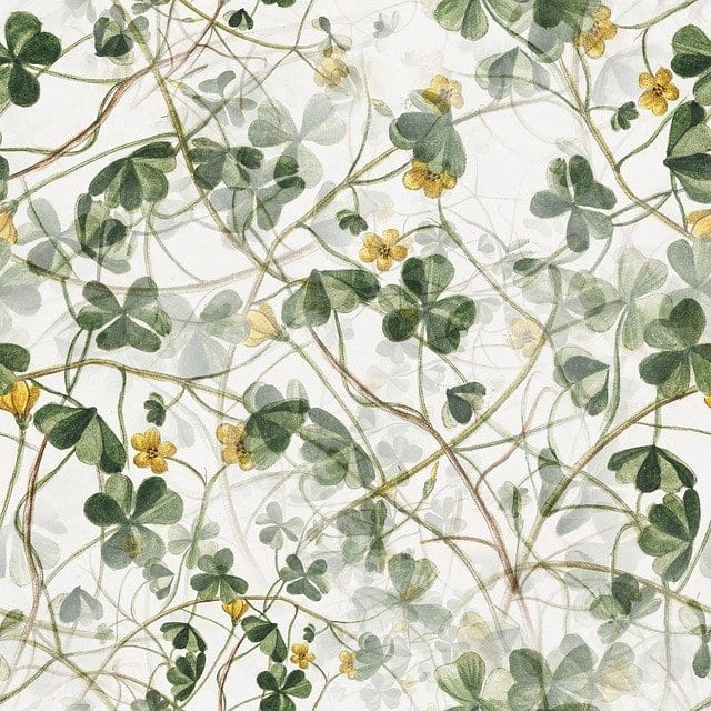 Floral Wallpaper: Common Benefits and Features